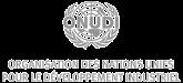 Organisation des Nations unies pour le développement industriel